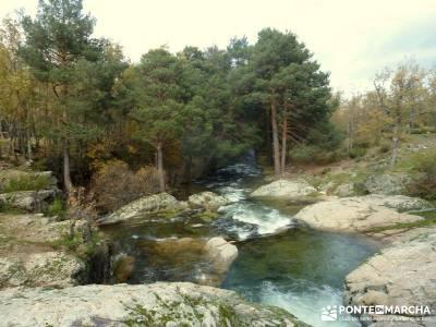 Bosque de Finlandia - Valle de El Paular;turismo en la sierra de madrid sendero gps pantalon senderi